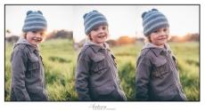 June Triptych 02